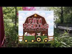 Mini Meadows - Petting Zoo & Gem Mine (Kingsport, TN) - YouTube