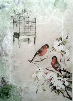 Rice Decoupage Paper / Decoupage Sheets  / Scrapbooking / Magic Birds  / Vintage