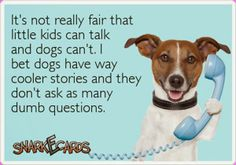 wouldnt that be something if our dogs could talk???