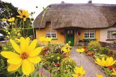 Cottage irlandese