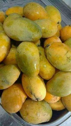 Mango Fruit, Fresh Fruit, Tumblr Food, Snap Food, Fruit Photography, Exotic Fruit, Tropical Fruits, Beautiful Fruits, Desi Food