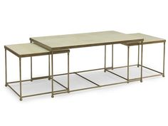 Concept, not necessarily this one. Brass/Goatskin Parchment Nesting Cocktail Table - Dering Hall