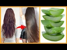 How To Grow Long and Thicken Hair Faster With Aloevera Gel ! Help Hair Grow, How To Grow Your Hair Faster, Grow Long Hair, How To Make Hair, Long Hair Fast, Long Hair Tips, Beauty Tips For Hair, Beauty Hacks, Hair Growth Tips
