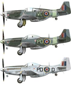 Polish Mustangs https://www.fanprint.com/licenses/air-force-falcons?ref=5750