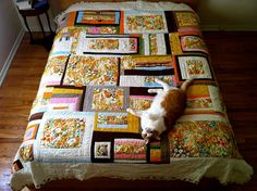pleasant valley quilt with Diego by Erika Ray