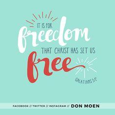 REDE MISSIONÁRIA: FREEDOM