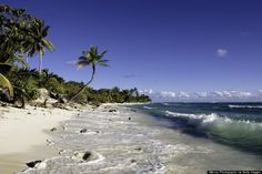 The Cocos Islands Is The Top Destination For 2015