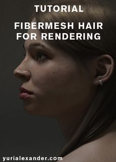 Fibremesh hair for rendering