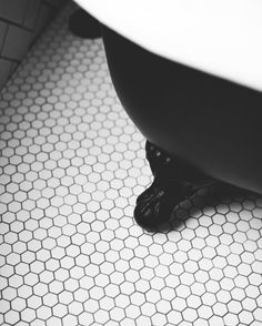 Looove for these hexagon bathroom tiles Bathrooms, Tile, Instagram, Home Decor, Mosaics, Decoration Home, Bathroom, Room Decor, Full Bath