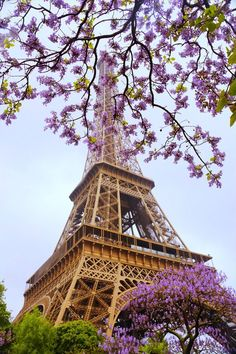 Flowers over Eiffel Tower