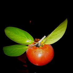 Persimmon from my tree