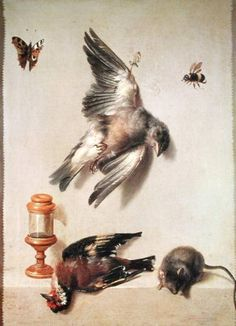 Still_life_dead_birds_mouse_hi