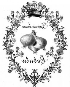 Cebula cebolla blanco etiqueta