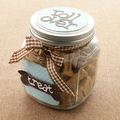 Dog Treats Container