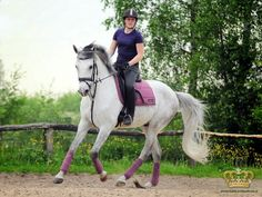 Fancy is now cantering and picking up correct leads! She is so amazing!-Harley