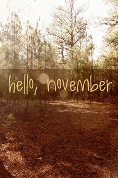 hello, november - Love this idea for each month of Project Life
