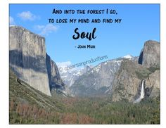 "Into the forest I go, to lose my mind and find my soul John Muir - Yosemite National Park - INSTANT DOWNLOAD 8""x10"" Printable Artwork by CPearsonProductions on Etsy"