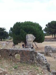 Ancient roman city of Aleria, Corsica