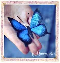 """Make a brooch """"Butterfly"""" of floral clay - Jewelry & Accessories - needlework - Inhabitant: to be a woman - it's fun! Polymer Clay Canes, Fimo Clay, Polymer Clay Jewelry, Clay Projects, Clay Crafts, Biscuit, Diy Butterfly, Clay Design, Clay Animals"""