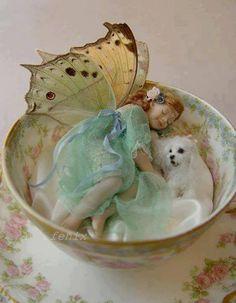 Fairy in tea cup.