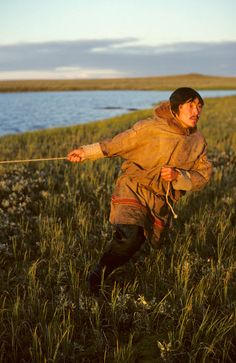 Sasha Seratetto, a Nenets reindeer herder, pulls on a rope as he checks a fish net he has set on a tundra pond. Yamal, Western Siberia, Russia: Russia, Yamal: Arctic & Antarctic photographs, pictures & images from Bryan & Cherry Alexander Photography.