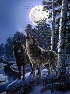 Loup-Lobo- Wolf