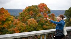 See the New York fall foliage at it's prettiest this fall! Take your weekend stroll to one of these beautiful spots—your kiddos will love picking up the leaves Nyc Holidays, Stuff To Do, Things To Do, New York, Explore, Adventure, Fall, Families, Beautiful