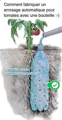 Comment Fabriquer un Arrosage Automatique Pour Tomates Avec une Bouteille. Hydroponic Gardening, Hydroponics, Organic Gardening, Container Gardening, Gardening Tips, Flower Gardening, Gardening Services, Gardening Gloves, Gardening Supplies