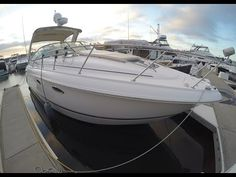 Chaparral 310 Signature Express Cruiser by South Mountain Yachts