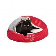 BOBBY Huleseng til katte