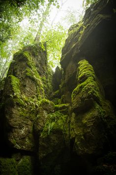 Collinwood Scenic Caves Camping Places, Yearning, Caves, Amazing Photography, Ontario, Places To Go, Landscapes, Hiking, Canada