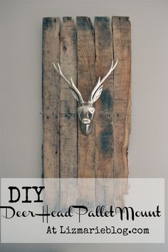 Deer Head Pallet Mount - have to make this...I'm thinking this will be a xmas present for a special boy ;)