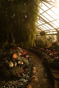This is what I envision on the inside of the greenhouse!  Walkways, walls with planting beds, & lots of trees!