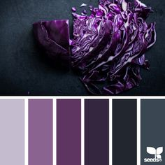 today's inspiration image for { chopped hues } is by @dashtropie ... thank you Deborah for your inspiring #SeedsColor photo share!
