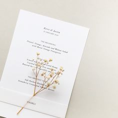 A simple bright white wedding with vellum guest name tag and dried flowers Minimalist Wedding Reception, Minimal Wedding, Wedding Table Settings, Wedding Reception Decorations, Floral Invitation, Invitation Design, Wedding Envelopes, Wedding Invitations, Romantic Wedding Stationery