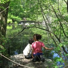 Things to do with kids: Great Places to Hike with Kids Around Boston