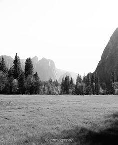 Lately the only travels I've been doing are in my memories... Light and shadows in Yosemite. . . . . #yosemite #yosemitenationalpark #explorecalifornia #chasinglight #justgoshoot #acertainslantoflight #makemoments #toldwithexposure #acolorstory #vsco #vscocam #nothingisordinary #visualsoflife  #openmyworld #ourplanetdaily #moodygrams #agameoftones #exkart #finditliveit #exploremore #mextures #natgeo #travelstoke #wonderful_places #artofvisuals  #bnw_life #bnw_society #bnw_planet #bnw_soul