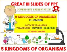 The power point presentation of  5 Kingdoms of Organisms included 111 slides: 1. Introduction and Vocabulary  (Slide 1-23)2. Kingdom Monera (Slide 24-44)3. Kingdom Protista (Slide 45-54)4. Kingdom Fungi (Slide 55- 70)5. Kingdom Plantae ( Slide 71 -85)6.