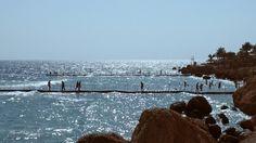 Join us on a tour to Ras Um El Sid on the Sinai Peninsula.