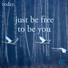 Your daily mantra: just be free