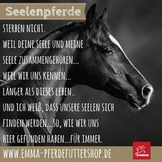 ICH WEISS, DASS UNSERE SEELEN SICH FINDEN WERDEN. TEILEN AUSDRÜCKLICH ERWÜNSCHT! Visit us: emma-pferdefuttershop.de