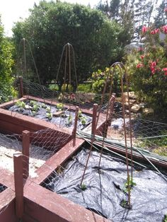 I like growing vegetables but finding decent supports is difficult.I bought some from Bunnings but after a season or so they were bending and really not man enough for the job.I have also used wood but - you know - rot and all that nonsenseI want something that will last years (at least 30!!) to see me out :-)Supplies Diy Trellis, Garden Trellis, Fall Door Decorations, Fall Decor, Little Tikes Playhouse, French Country Chandelier, Felt Leaves, Tomato Cages, Diy Chalkboard