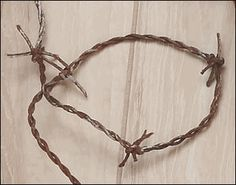 Fake Barbed Wire - It looks like old rusty barbed wire but it is safe and flexible. Comes in up to 100 foot lengths. We can cut whatever length you would like.