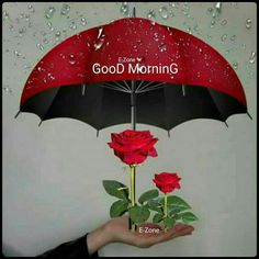 Good Morning sister and all. God bless xxx take care and keep safe ❤❤❤😘🍁🍂🍃 Good Morning Rainy Day, Good Morning Sister, Good Morning Coffee, Good Morning Picture, Good Night Image, Good Morning Messages, Good Morning Good Night, Morning Wish, Good Morning Quotes