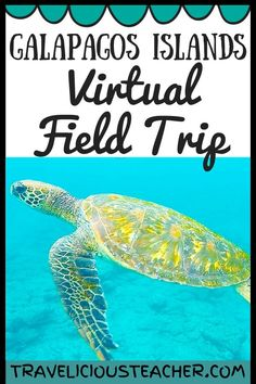 What makes the Galapagos Islands so exciting? Explore some of the most unique animals and history of this region in a virtual field trip from TpT. Charles Darwin, Home Learning, Learning Activities, Book Tasting, Material Didático, Powerpoint Lesson, Virtual Field Trips, Virtual Travel, Excursion
