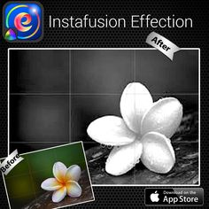 Instafusion Effection App #effection #Frangipani #howto #Complex #pickoftheday #photofunia #longexposure #cool #texteffect #Sydney #photography #graph #digitalart #circle  #Radius #Radiator #glass #awesome #amazing #Android #Apple #Samsung #quote #copying -------------------------- A simple easy-to-use filter app that beautifies your personal pics and allows you to share them on Instagram, Facebook and much more!! http://www.amazon.com/dp/B00M461OQ2