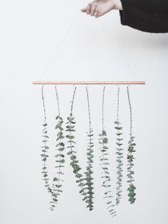 DIY : une suspension d'Eucalyptus Maplantemonbonheur.fr