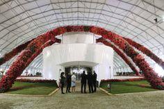 Fiori, piante e design: il festival alle Cascine