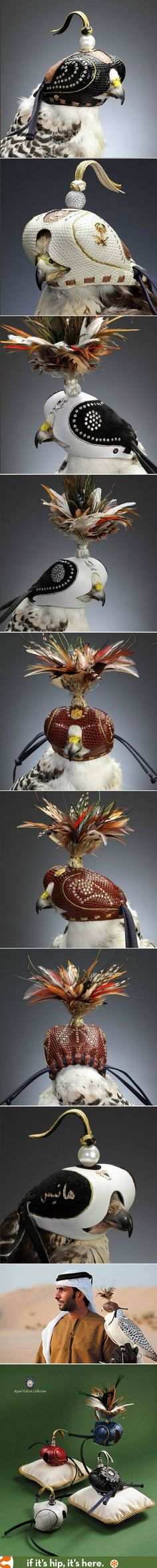 Stunning diamond-studded hoods for falconry. Wow.