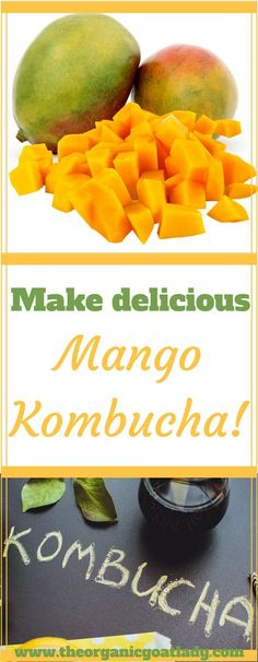 Do you make your own Kombucha? Are you always on the look out for delicious new Kombucha flavors? This Mango Kombucha Recipe is going to be your new favorite! Kombucha Flavors, Kombucha Scoby, How To Brew Kombucha, Kombucha Brewing, Making Kombucha, Kombucha Benefits, Fruit Tea Recipes, Detox Recipes, Healthy Recipes
